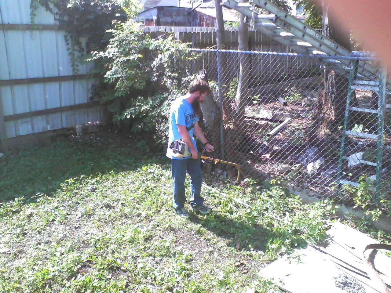 Whacking backyard weeds.